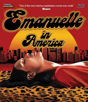 Эммануэль в Америке / Emanuelle in America (1977) BDRemux 1080p   P2