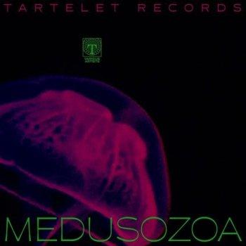 VA - Medusozoa (2021) MP3